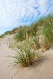 Dunes grass. Sand dunes with beach grass Stock Photo