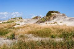 Dunes of Hatteras. Blues sky with clouds over sandy dunes Stock Photography