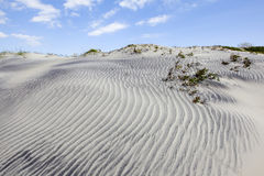 Dunes of Hatteras. Blues sky with clouds over sandy dunes Stock Photos