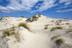 Dunes of Hatteras. Blues sky with clouds over sandy dunes Stock Image