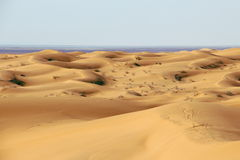 Dunes I Royalty Free Stock Images