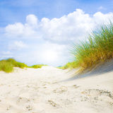 Dunes idylliques avec la lumière du soleil Images stock