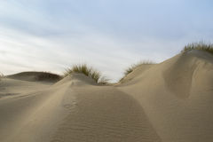 Dunes III Stock Photography