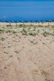 Dunes at Kalogria Beach Stock Photography