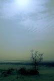 Dunes la nuit Images libres de droits