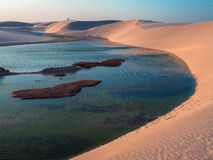 Dunes with lagoon. Lagoon with dune - National Park of the Lencois Maranhenses - Brazil Royalty Free Stock Photography
