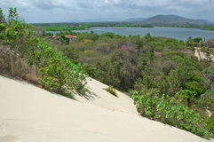 Dunes and Lagoons. Northeastern coast of Brasil, Cumbuco, Cear Royalty Free Stock Photo