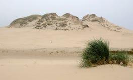 Dunes landscape Royalty Free Stock Photos