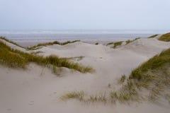 Dunes landscape Stock Photography