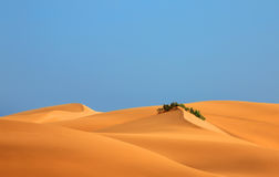Dunes landscape. Royalty Free Stock Photos
