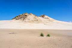 Dunes in Leba, Poland. Royalty Free Stock Photo