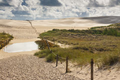 Dunes in Leba - Poland. National park. Stock Photography