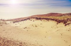 Dunes in Lithuania Royalty Free Stock Image