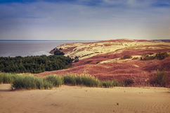 Dunes in Lithuania Stock Image