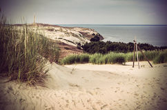 Dunes in Lithuania Stock Images