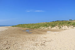 Dunes in Ludington State Park in Michigan Royalty Free Stock Image