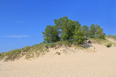 Dunes in Ludington State Park in Michigan Royalty Free Stock Images