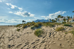 Dunes in Marbella Stock Images