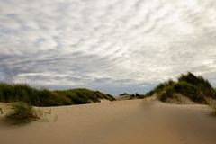 Dunes in Westland stock photos