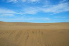 Dunes of maspalomas Royalty Free Stock Photography