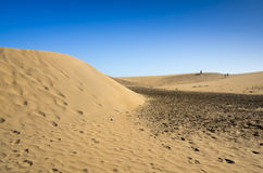 Dunes of Maspalomas Stock Photos