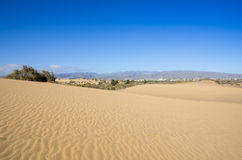 Dunes of Maspalomas Stock Photo