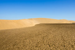 Dunes of Maspalomas Royalty Free Stock Photos