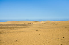 Dunes of Maspalomas Royalty Free Stock Photography