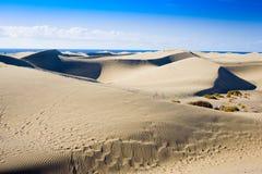 Dunes of Maspalomas Gran Canaria Stock Images