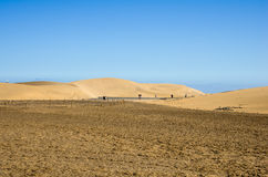 Dunes of Maspalomas Royalty Free Stock Photo