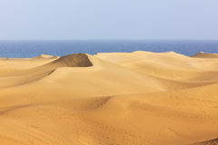 Dunes of Maspalomas, Grand Canary Royalty Free Stock Photo
