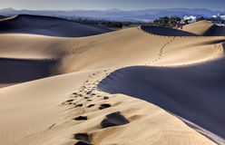 Dunes of Maspalomas Royalty Free Stock Images