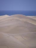 Dunes of Maspalomas Stock Photography