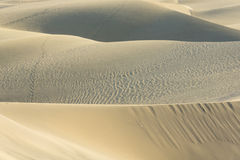 The Dunes in Maspalomas Royalty Free Stock Photos