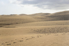 The Dunes in Maspalomas Royalty Free Stock Image