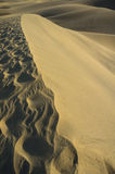 The Dunes in Maspalomas Stock Photos