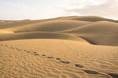 The Dunes in Maspalomas Royalty Free Stock Images