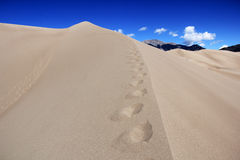 Dunes meet Mountains Royalty Free Stock Photography