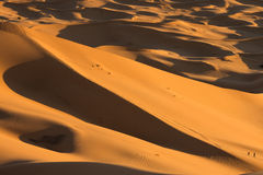 Dunes in Moroccan desert Royalty Free Stock Photography