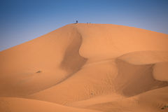 Dunes, Morocco, Sahara Desert Royalty Free Stock Photos
