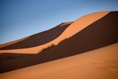 Dunes, Morocco, Sahara Desert Royalty Free Stock Photo