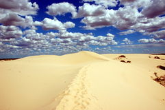 Dunes in Mungo National Park, Australia. The central feature of Mungo National Park is Lake Mungo, the second largest of the ancient dry lakes Royalty Free Stock Photos