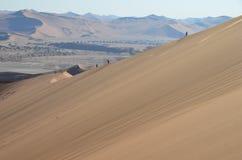 Dunes in Namib desert, Namibia. Africa royalty free stock image