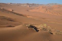 Dunes in Namib desert, Namibia. Africa Stock Images