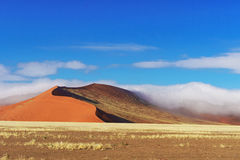 Dunes of Namib desert, Namibia, Africa Royalty Free Stock Photography