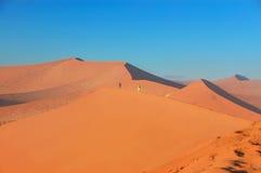 Dunes of Namib desert, Namibia Royalty Free Stock Photo