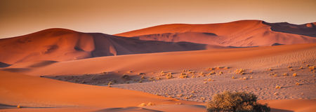 Dunes. In Namib Naukluft Park at dawn, Sesriem, Namibia Royalty Free Stock Images