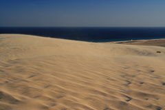 Dunes near the Indian ocean. In Qatar Stock Image