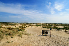 Dunes in the Netherlands Stock Image