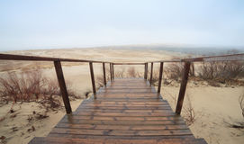 Dunes in Nida, Lithuania Royalty Free Stock Images